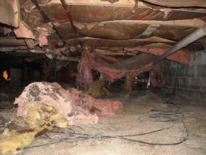 crawlspace wet insulation before